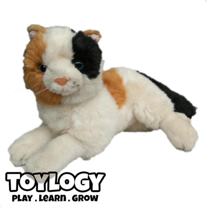 Katalog Kucing Telon Hargano.com