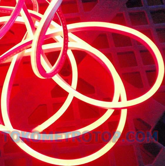 harga Lampu Led Neon Flex Lampu Selang Merah Merk Milky (10 Meter) Tokopedia.com