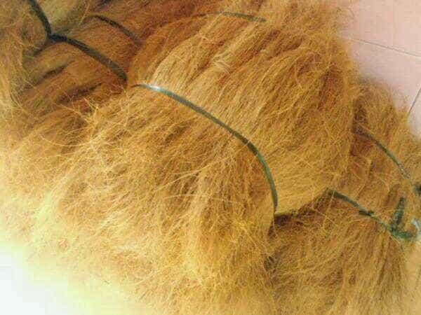 harga Sabut kelapa bahan utama kerajinan tangan dan media tanam cocopeat Tokopedia.com