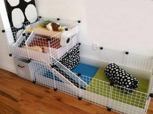 harga C&c cage/grid+konektor kandang kura kura darat/marmut/guinea pig Tokopedia.com