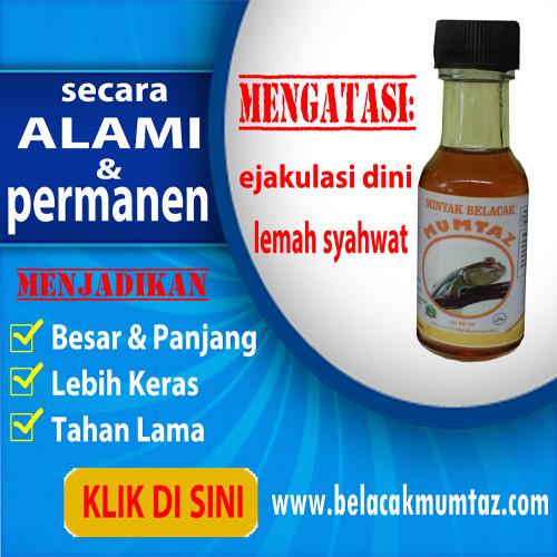 jual obat kuat herbal pria perkasa minyak belacak mumtaz 100 alami kedai mumtaz tokopedia