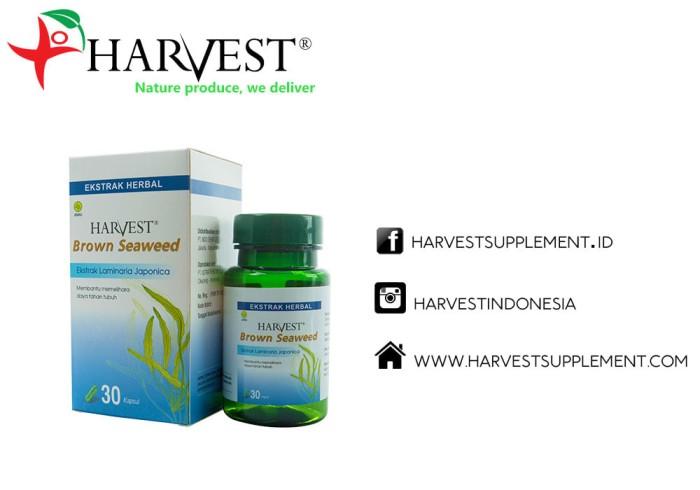 Foto Produk Harvest Brown Seaweed Suplemen Herbal Jantung & Kolesterol 30kapsul dari Harvest Supplement