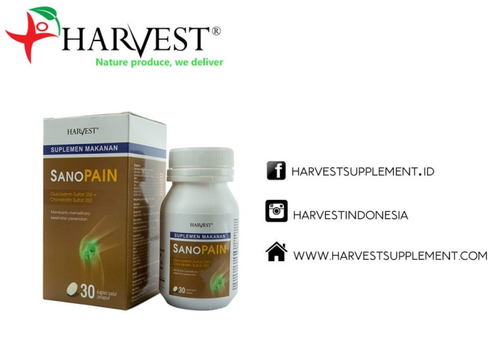 Foto Produk Harvest Sanopain Suplemen Tulang 30tablet dari Harvest Supplement