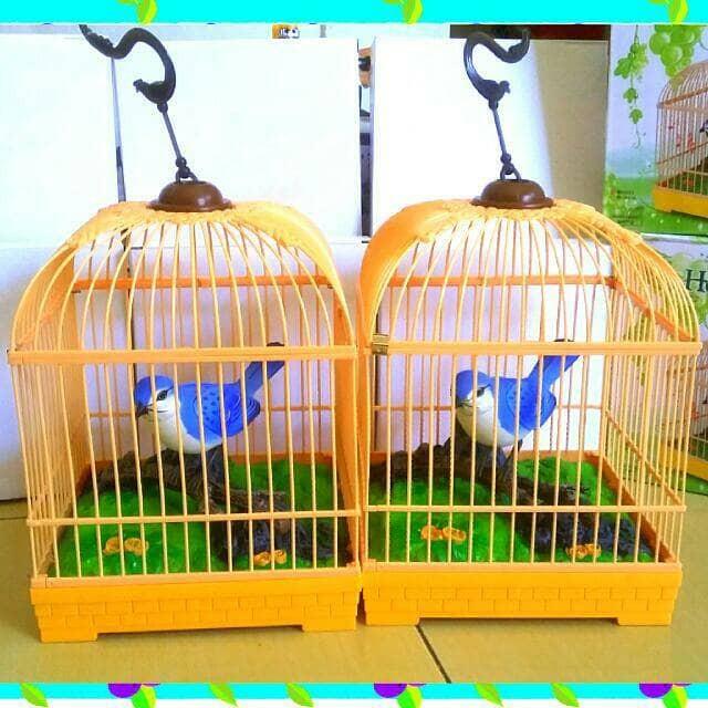 harga Burung bernyanyi dalam sangkar Tokopedia.com
