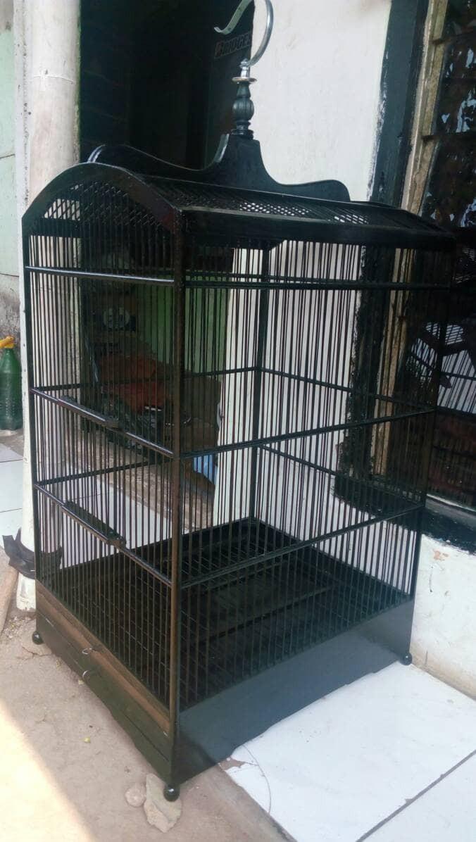 harga Kandang Sangkar Burung Rplika Ebod Jati Uk No 1 Tokopedia.com