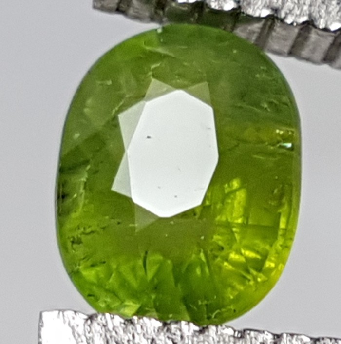 harga Natural 1.14ct apple green safir top luster heat only Tokopedia.com