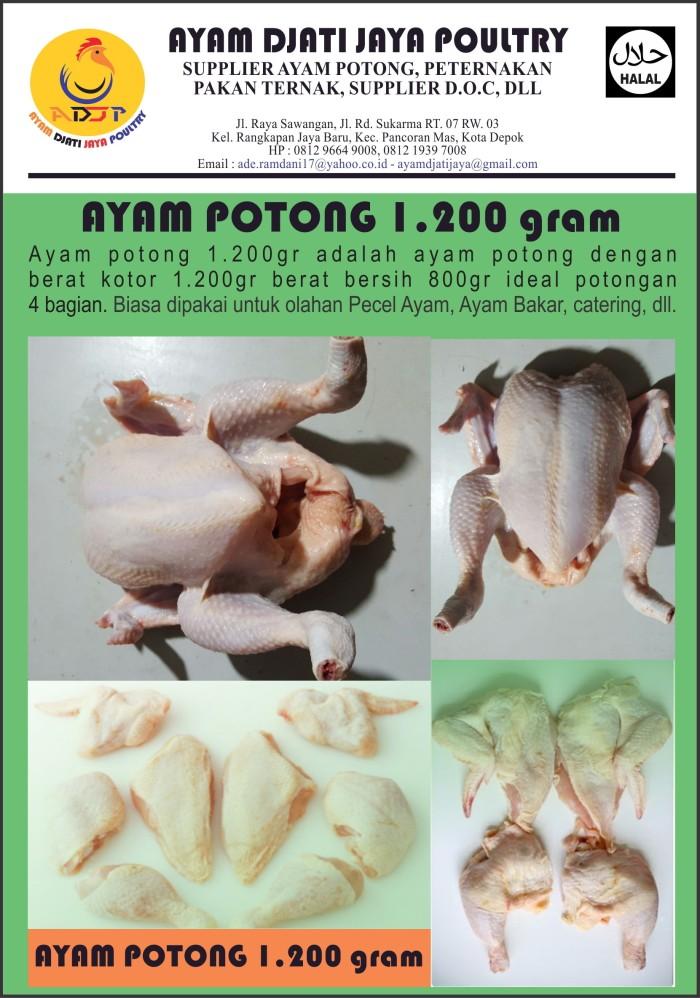 harga Ayam potong ekor 1.200gram Tokopedia.com