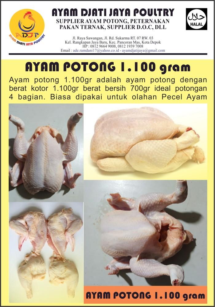 harga Ayam potong ekor 1.100gram Tokopedia.com