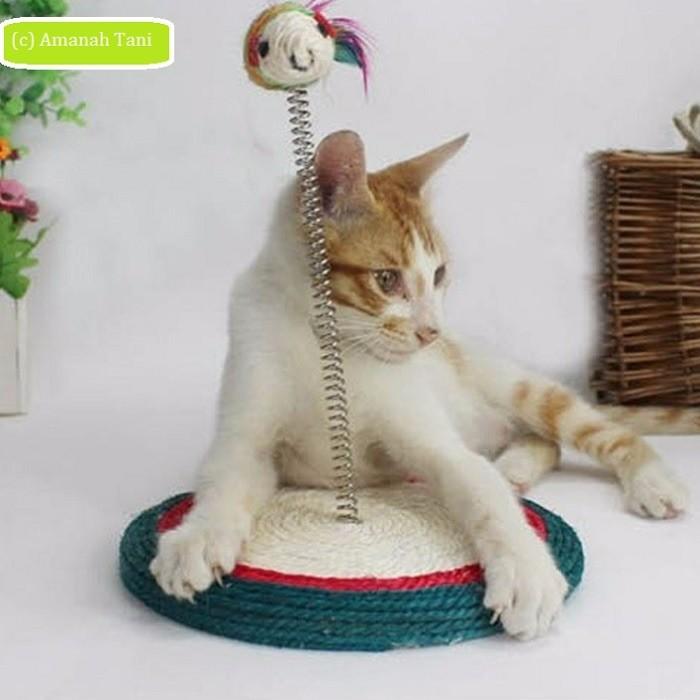 harga Mainan kucing garukan per tikus murah Tokopedia.com
