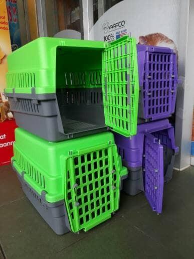 harga Pet cargo anjing / pet cargo kucing Tokopedia.com