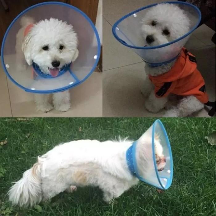Cone Collar Size L Corong Pelindung Leher Anjing Kucing Hewan Sakit .