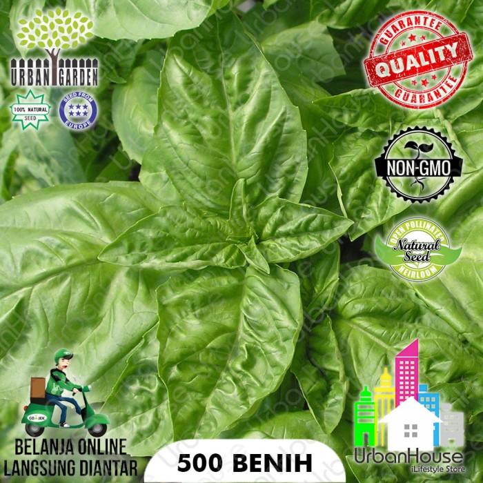 harga Herbs - benih tanaman kemangi basil aton eropa 500 biji grosir pack Tokopedia.com