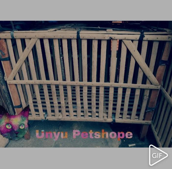 harga Kandang Kucing Kelinci Sg Musang Tupai Ular Marmut Landak Iguana Bambu Tokopedia.com