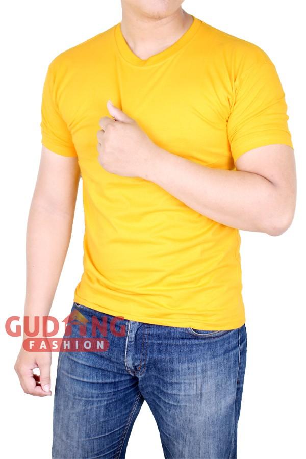 Atasan Casual Kaos Kekinian Pria PLS 179