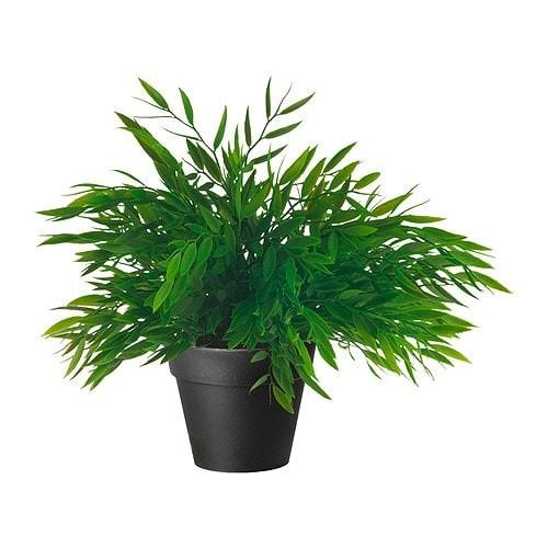 Jual Tanaman Hias +POT Ruang Tamu Kamar Cafe Ikea FEJKA Bunga Rumput ... ff27e820fb