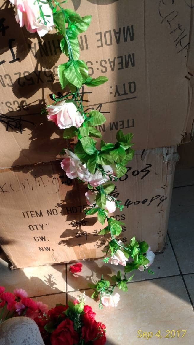harga Bunga mawar rambat / sold out Tokopedia.com