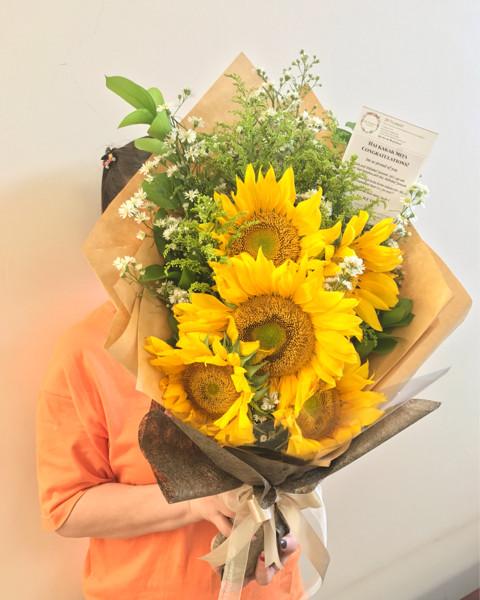 400 Gambar Bunga Matahari Setangkai  Terbaru