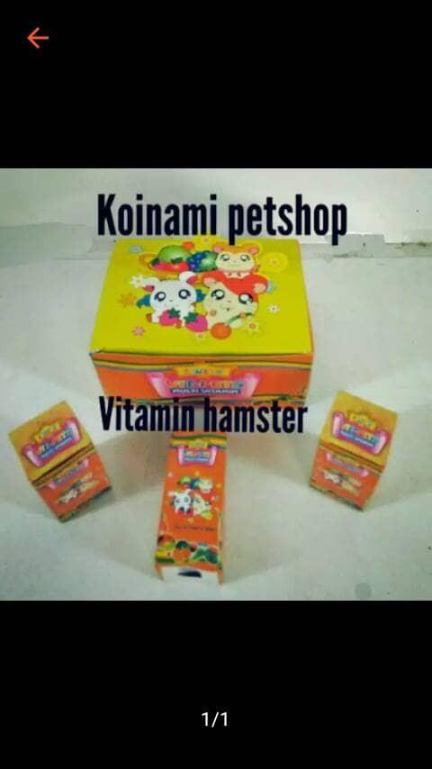 Vitamin Hamster / Aksesoris Hamster / Makanan Hamster / Mainan Hamst