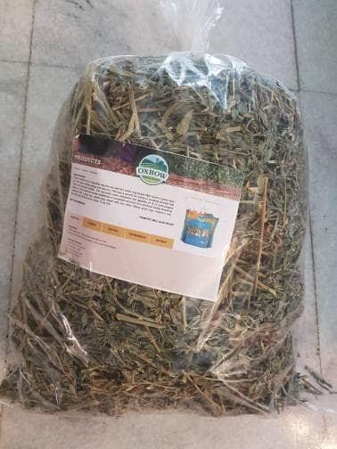 harga Oxbow alfalfa hay 1 kg Tokopedia.com