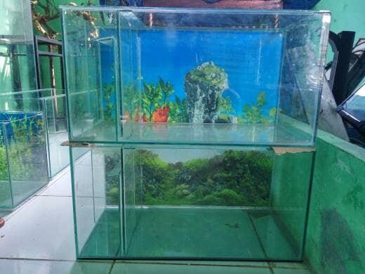 Jual Aquarium Kaca 60 X 30 X 35cm Filter Samping Jakarta Selatan Denny Aquarium Tokopedia