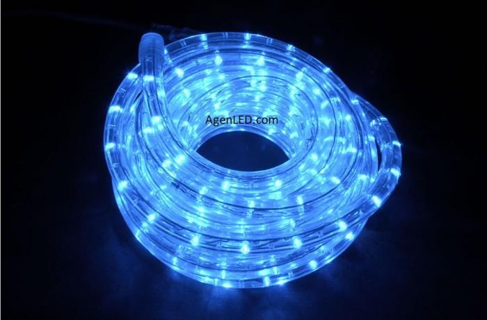 harga Lampu led selang / rope light / lampu dekorasi 10m (10 meter) biru Tokopedia.com