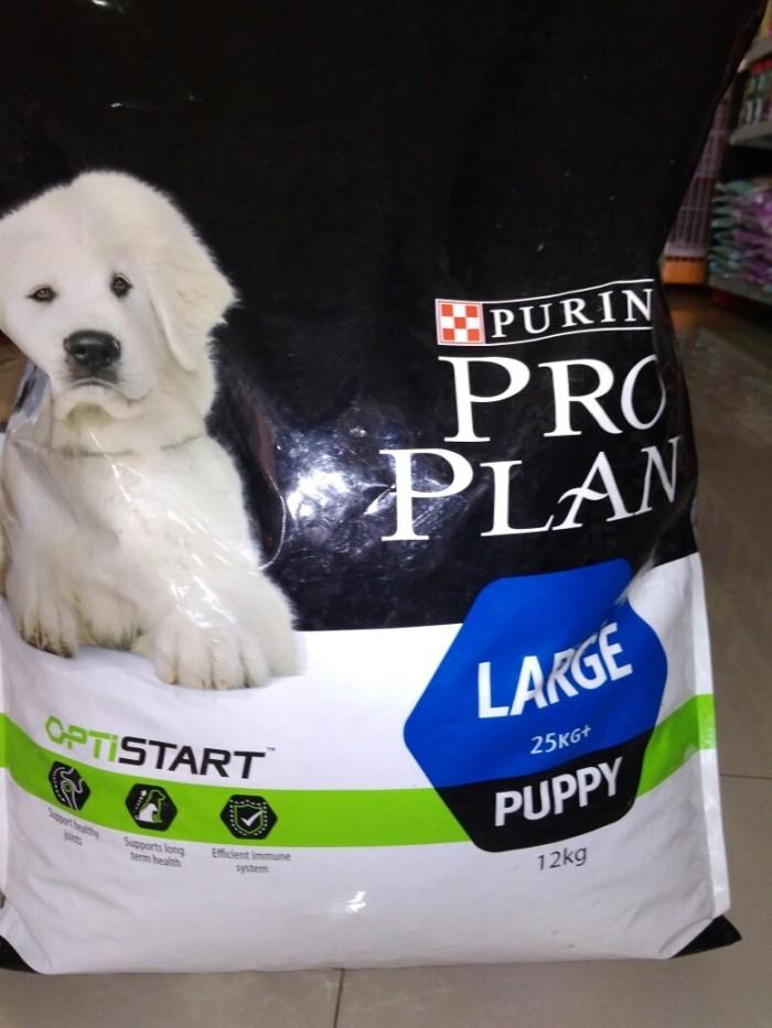 Pro plan puppy large breed 12kg (gojek only)/proplan puppy large breed