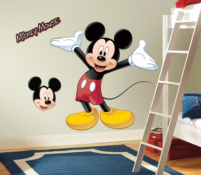 Cat Kamar Mickey Mouse