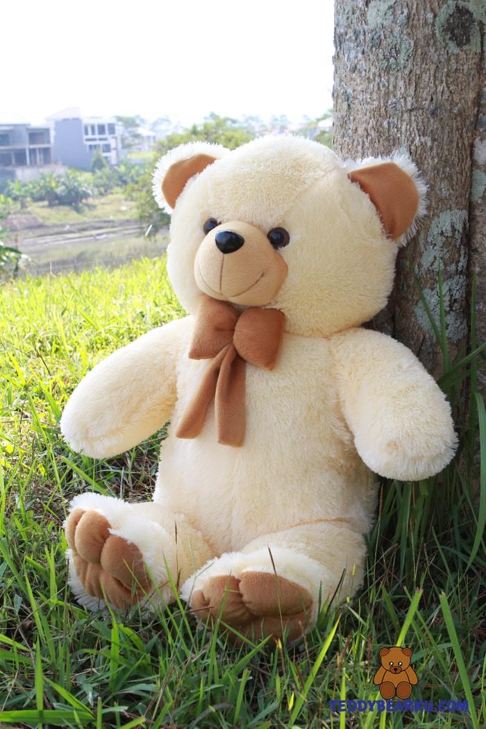 93 Gambar Boneka Teddy Bear Lucu Besar Gambar Pixabay