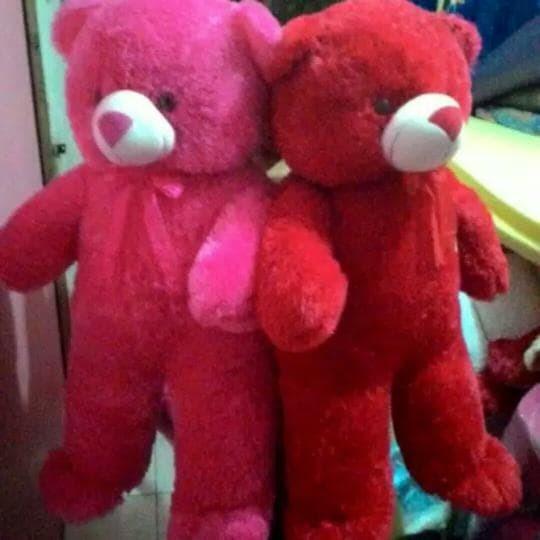 harga Boneka tedy bear jumbo giant 1m Tokopedia.com