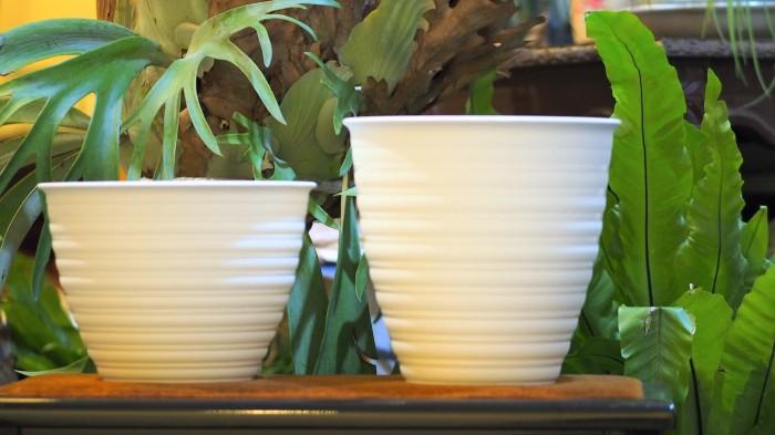 harga Pot tawon pirus 30 cm putih Tokopedia.com