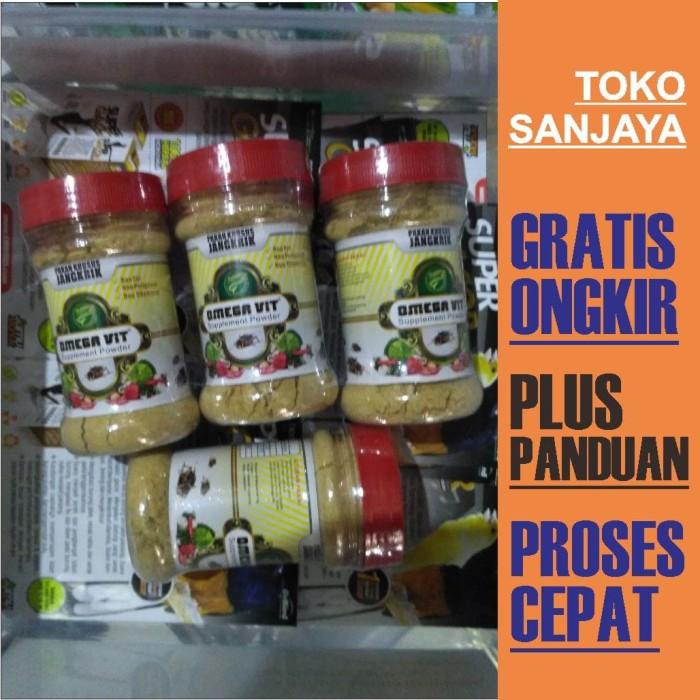 harga New omega vit tepung jangkrik burung murai kacer pleci omegavit kroto Tokopedia.com