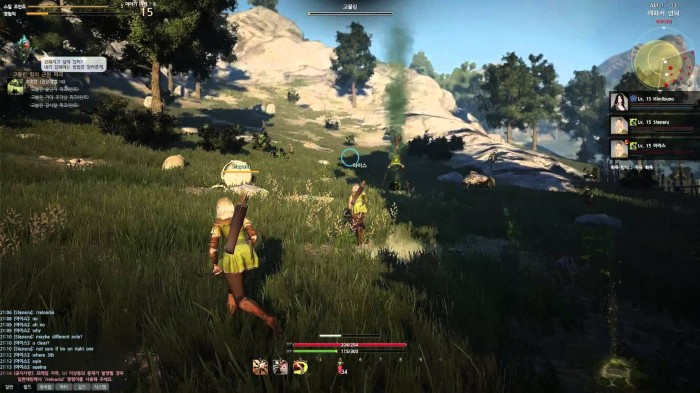 black desert cannot  the patch client