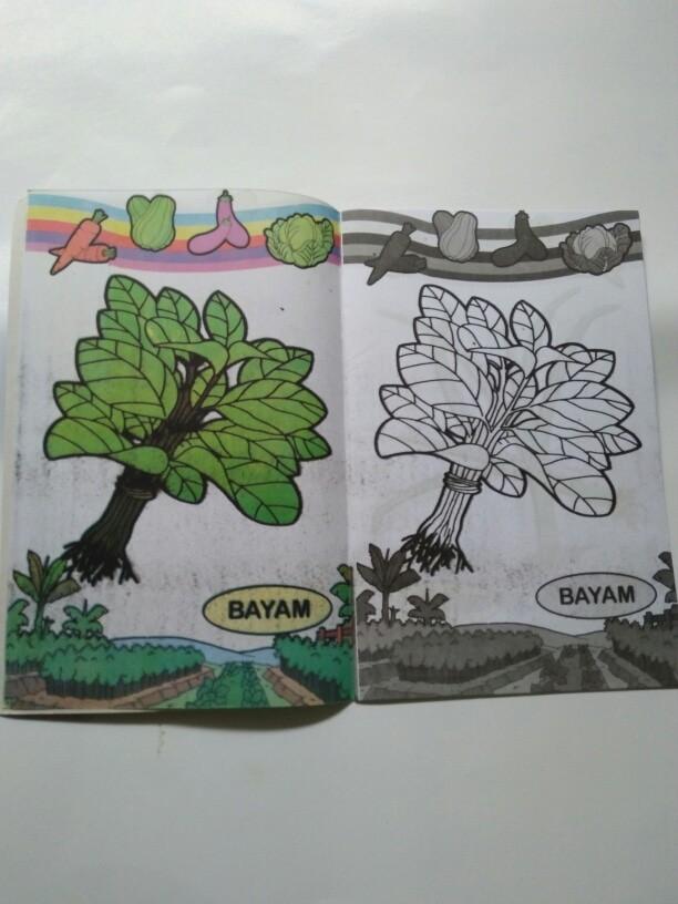 Jual Buku Mewarnai Sayuran Dki Jakarta Vinash Shop Tokopedia