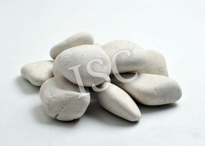 harga Batu koral kupang putih untuk taman terrarium &aquascape 10kg (4rb/kg) Tokopedia.com