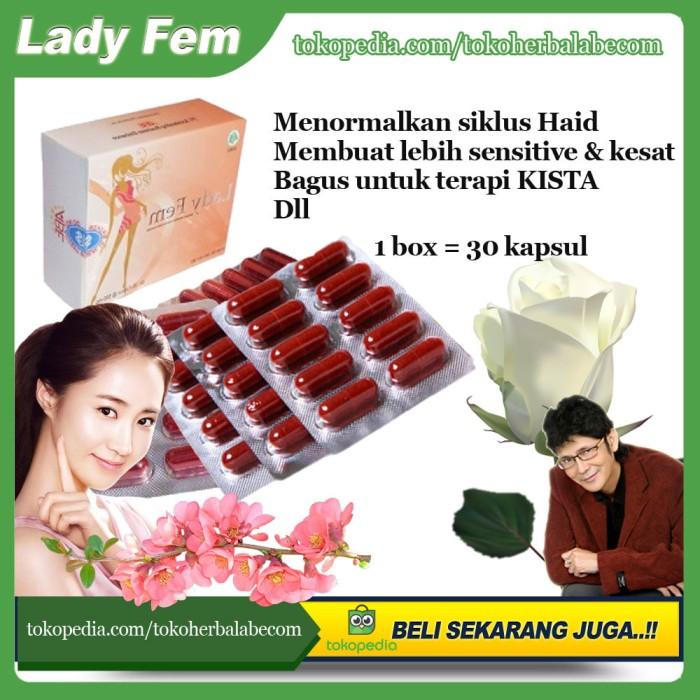 Foto Produk Ladyfem - Kapsul Herbal Solusi Kista dan Haid tidak Lancar dari TokoHerbalABEcom