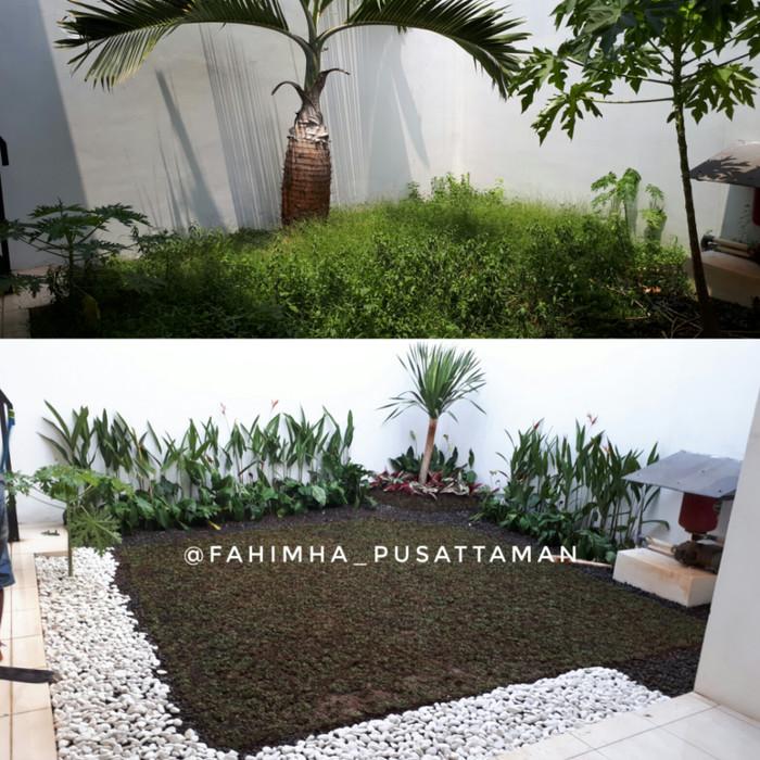 Desain Taman Anggrek Minimalis  jual tukang taman minimalis kota depok jasa taman landscape tokopedia