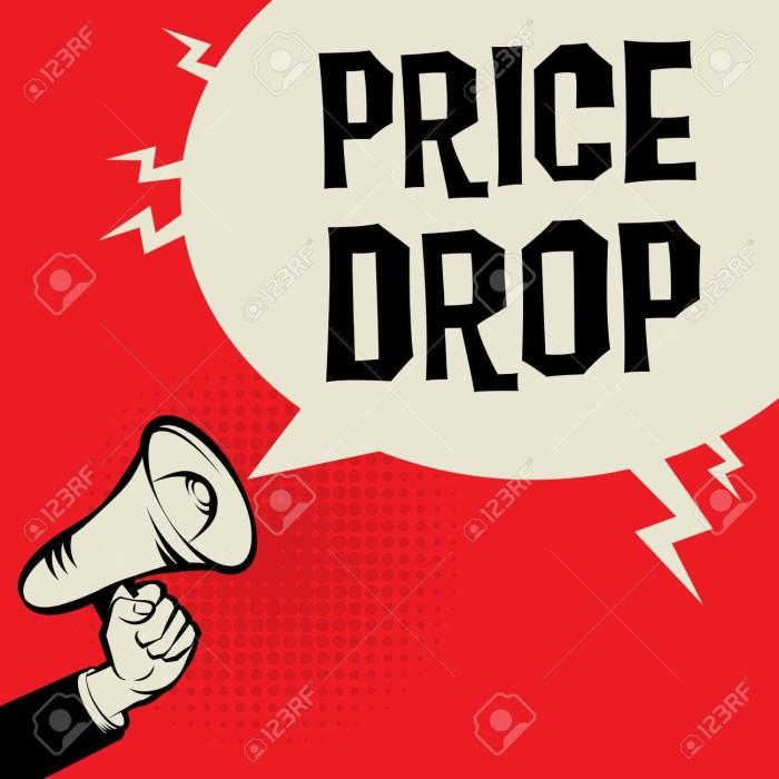 BUILDFPV DROP PRICE Up To 60%
