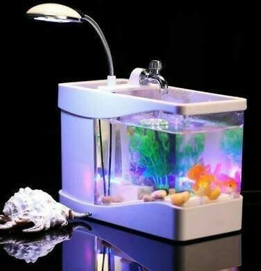 harga Nano usb mini aquarium desktop with clock- akuarium meja mini Tokopedia.com