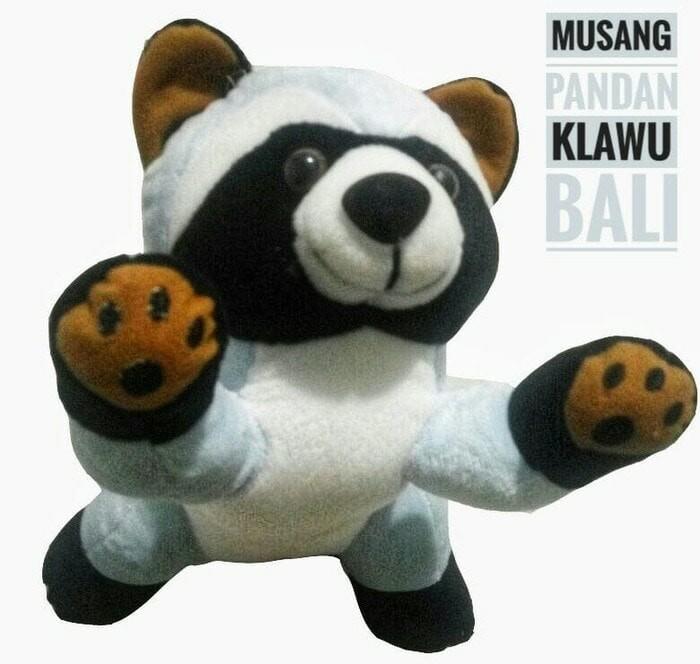 Boneka Musang / Luwak