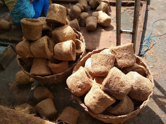 Jual Pot Sabut Kelapa Pot Bunga Pot Gantung Pot Bonsai Pot