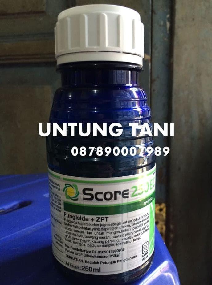 Harga Fungisida Score 250 Ml