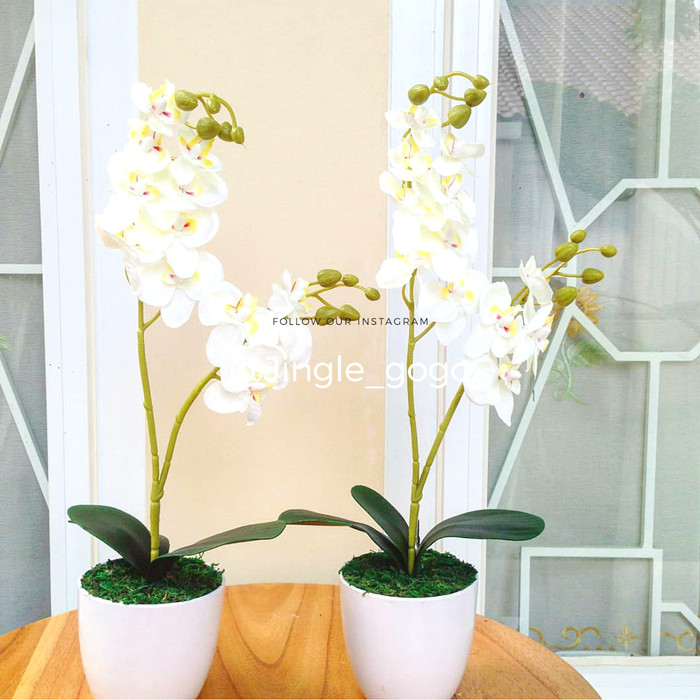 Jual SET Pot Bunga Anggrek Artificial Pajangan Hiasan Meja Dekorasi ... 839028df90