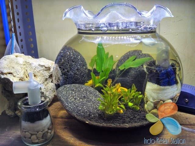 Filter Air Aquarium Bulat Allcanwear Org