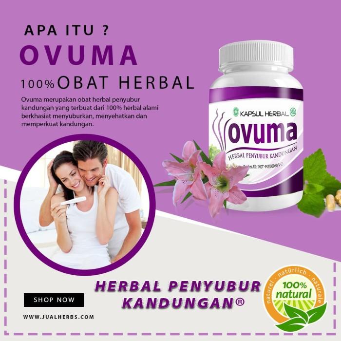 Obat Herbal Penyubur Kandungan - OVUMA
