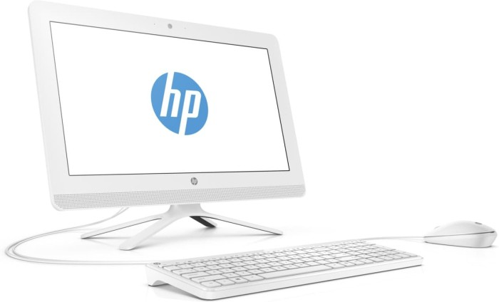 AIO HP 20-C413d