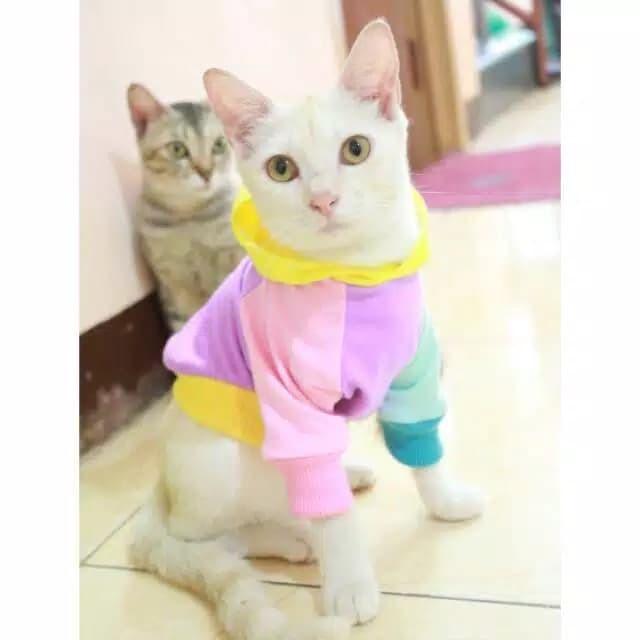 Jual Kaos Jumper Rainbow Untuk Kucing Lucu Baju Kucing Imut Murah Meriah Jakarta Selatan Si Meong Tokopedia
