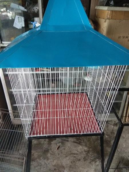 harga Cuci Gudang kandang Burung Beo Ukuran Besar warna biru Tokopedia.com