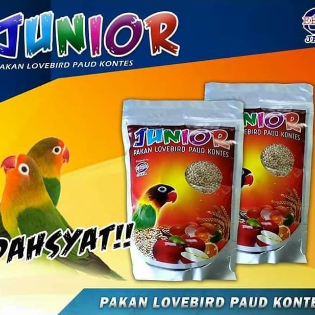 Jual Pakan Junior Paud Lovebird Kontes Jakarta Selatan Bilqish