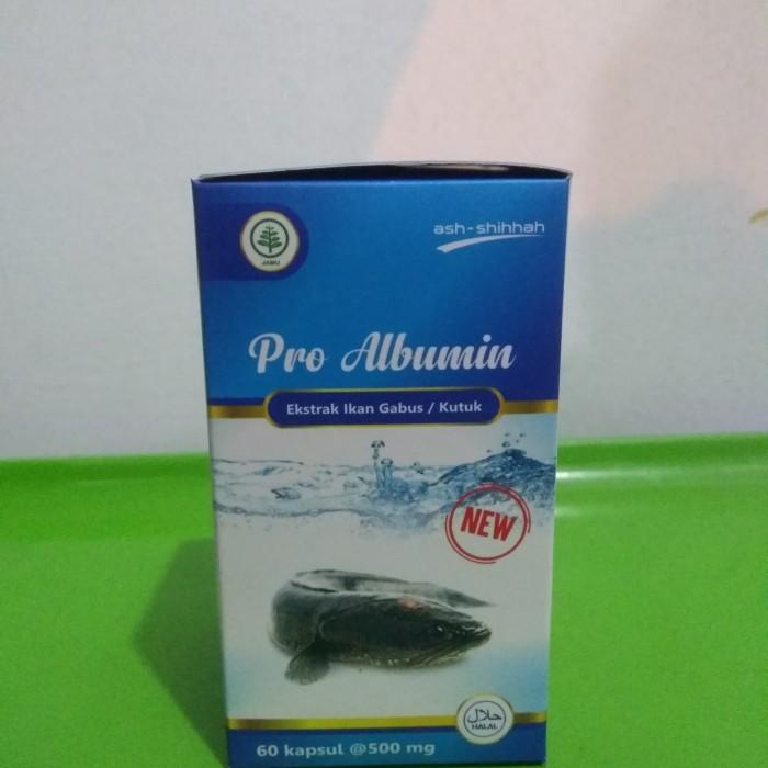 ... Kapsul Kutuk Premium Ekstrak Albumin Ikan Gabus 60 kapsul 500mg 501756253 Source Mempercepat Penyembuhan Luka Pro