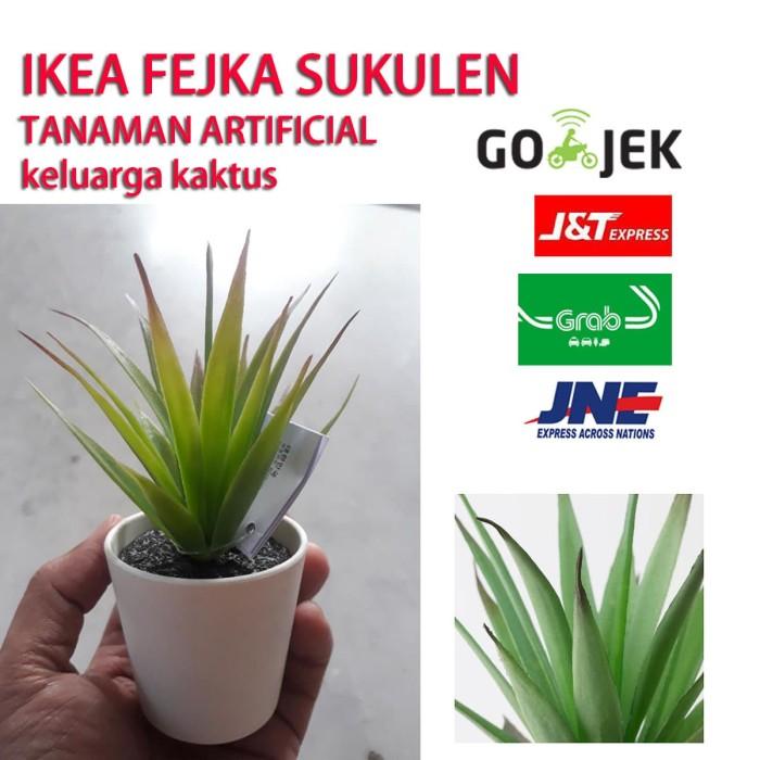 Ikea Fejka Sukulen Tanaman Tiruan Keluarga Kaktus - Blanja.com